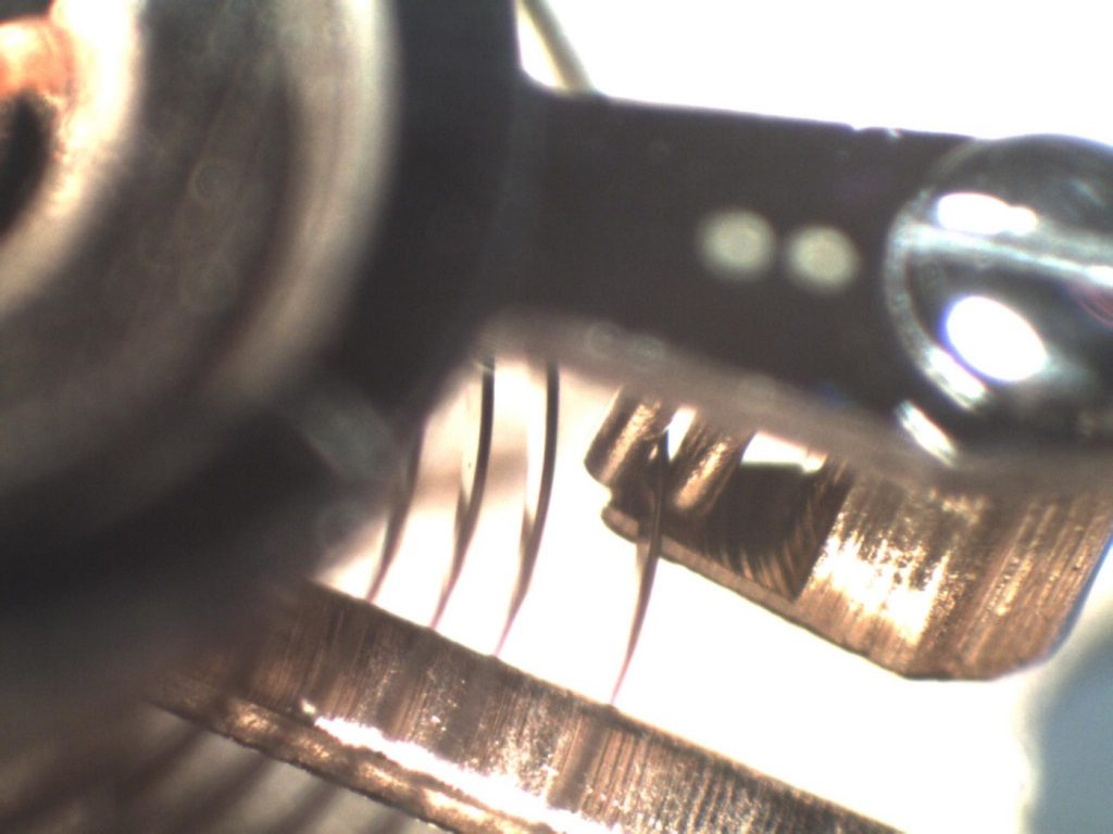 Watchmaker showing service microscope view of hairspring and regulator pins